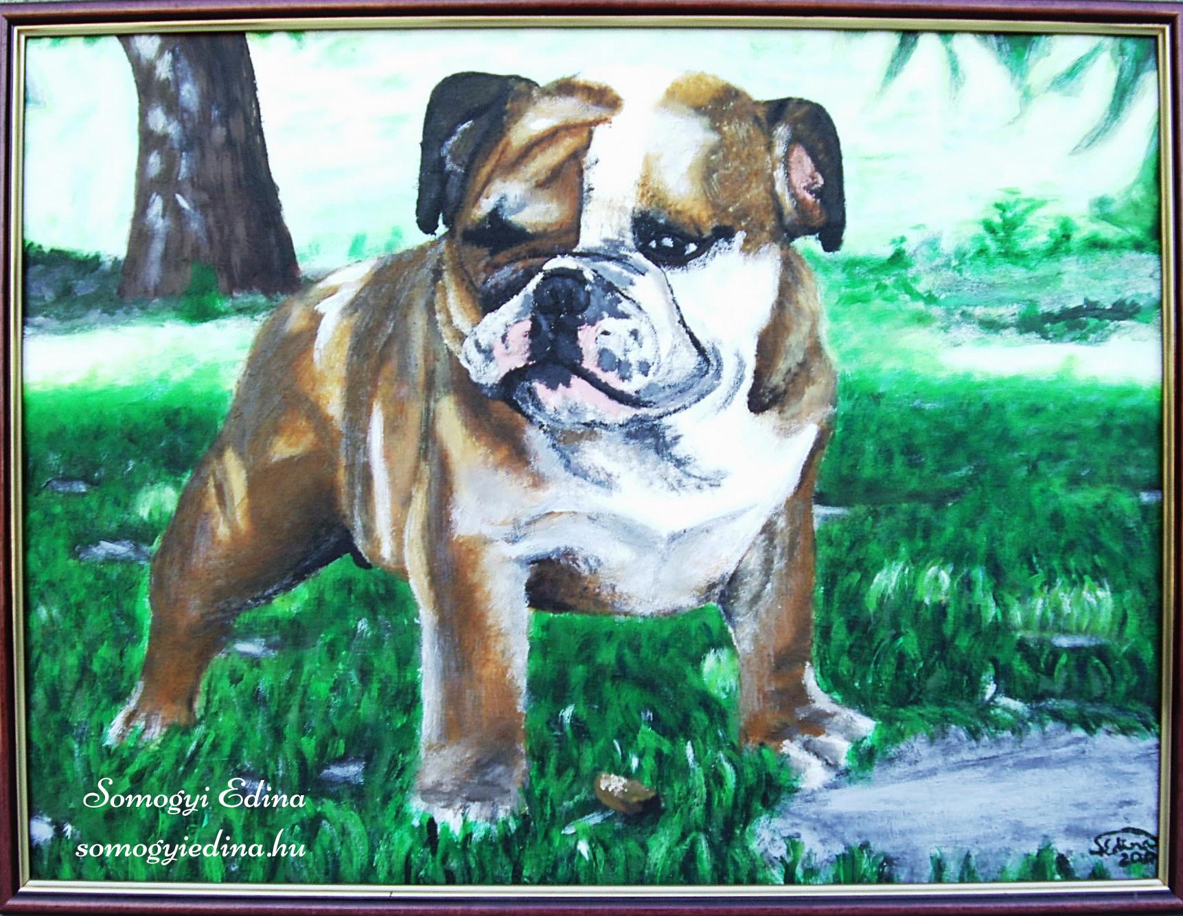 Bulldog A4, akril faroston, 2006