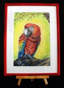 Papagáj 30x40 cm, színes ceruza, 2017 Ár: 12.990 Ft.