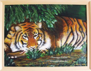 Tigris A3, akril faroston, 2006