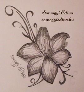 rajz 32